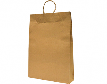 Paper Carry Bag with Twisted Paper Handle, Large, Brown - Castaway