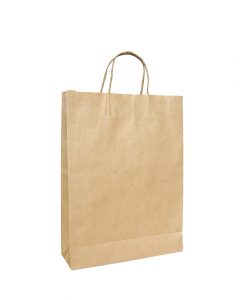 Twisted Handle Paper Bags Medium (260+120) x 360